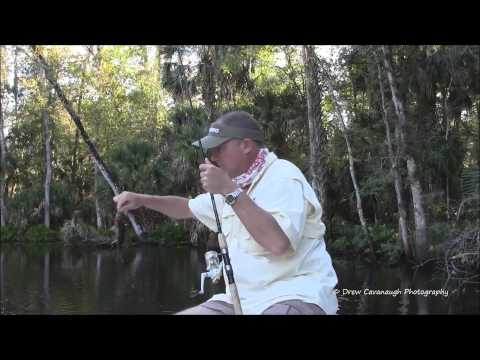 Wekiva and St Johns River Panfish