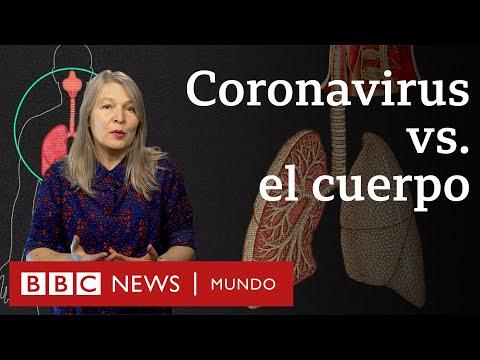 ¿Qué le hace el coronavirus al cuerpo? | BBC Mundo