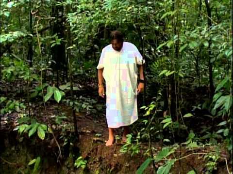 Aventura Selvagem - Os Encontros Mais Perigosos - Parte 1