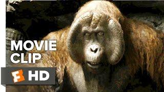 Download The Jungle Book Movie CLIP - King Louie (2016) - Christopher Walken Movie HD 3Gp Mp4