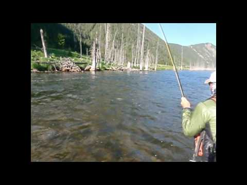 Fly Fishing Frenzy | Frenzy Trip day 4 on the Madison River