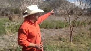 Puentes 23 feb 2014 plantando árboles frutales