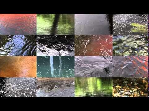 Flow by David Carlson