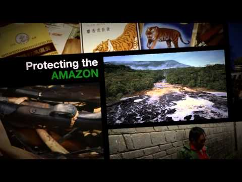 Earth Hour 2014 - Impact Beyond The Hour