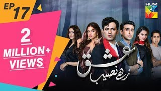Ishq Zahe Naseeb Episode 17 HUM TV Drama 11 October 2019