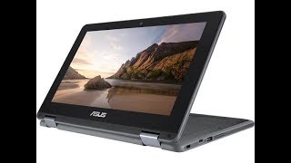 ASUS Chromebook Flip C213SA-YS02-S with Stylus EMR Pen