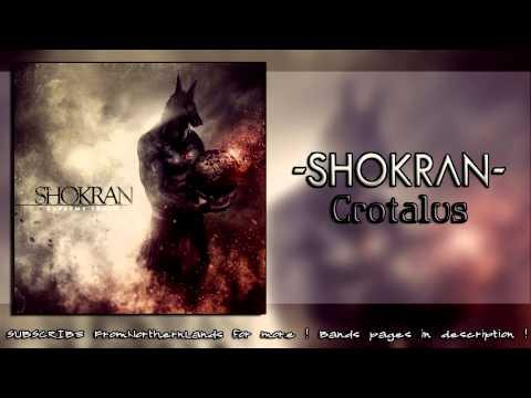 Shokran - Crotalus