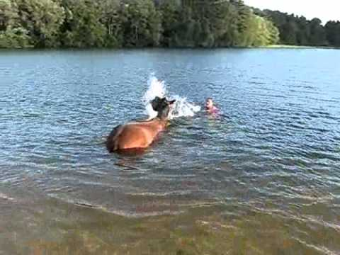 girl loses horse in water filmed for Twombly Publishing