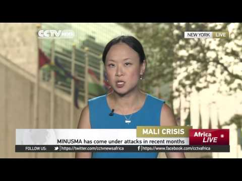 UN on Mali youth radicalization