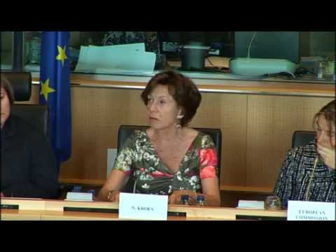Making Europe a Connected Continent - Neelie Kroes at the European Parliament