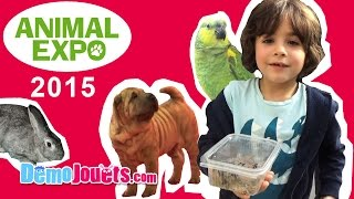 (VLOG) Animal Expo Chat Chien Poisson reptile 2015 - Démo Jouets