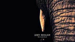 Watch Amy Millan I Will Follow You Into The Dark video