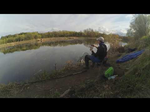 все про ловлю рыбы на фидер