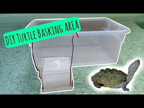 TURTLE BASKING AREA - DIY | Cheap and Easy!