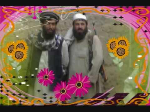 Pashto Naat Of  Tagab video