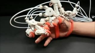 Hand Exoskeleton: Maestro Short