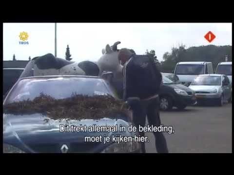 Bananasplit  John van den Heuvel's auto afleveren