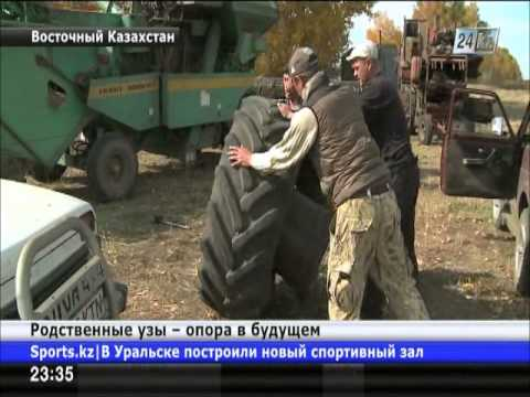 Семья Гладышевых из ВКО организовала крупное фермерское хозяйство