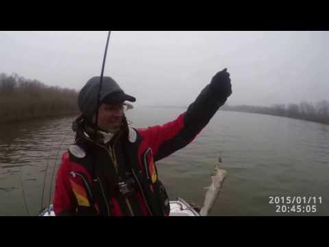ловля судака в марте на ахтубе