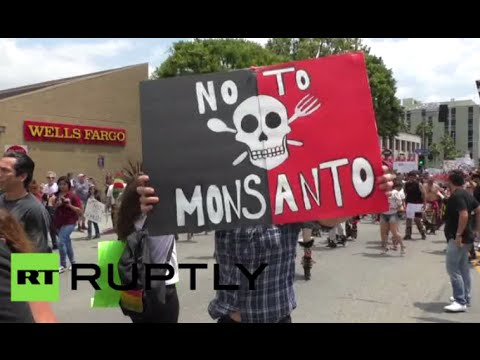 'Monsanto Kills': World takes to streets to protest biotech giant