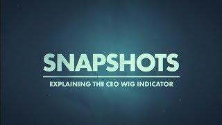 Explaining the CEO Wig Indicator | Marc Cohodes Real Vision Video