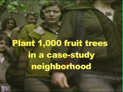 FALLEN FRUIT - PLANT THE PERIMETER