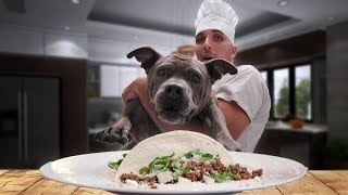 Cooking Street Tacos With My Pitbull