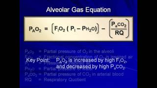 Normal Gas Exchange (Mechanical Ventilation - Lecture 4)