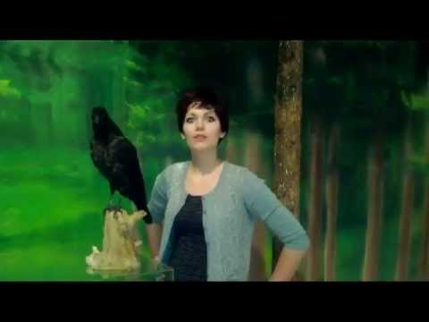 Museum Moments- Episode 6-The Common Raven