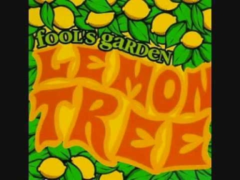 Lemon Tree video