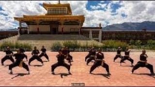kungfu kids (fighting)in pakistani school AIMS