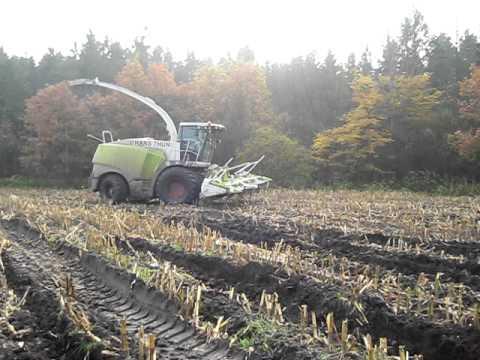 Schwarzer Xerion 3800 mit Seilwinde im Mais