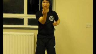 Samuel Kwok - Ip Man Wing Chun school in London, Siu Lim Tao Part 2