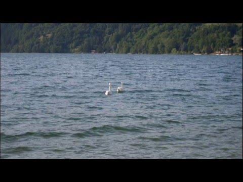 Calceranica al lago di Caldonazzo – La spiaggia (Giugno 2011)