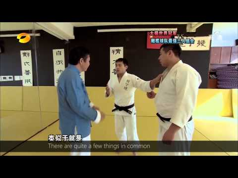 Tai Chi Master Wang Zhanhai Vs Judo video