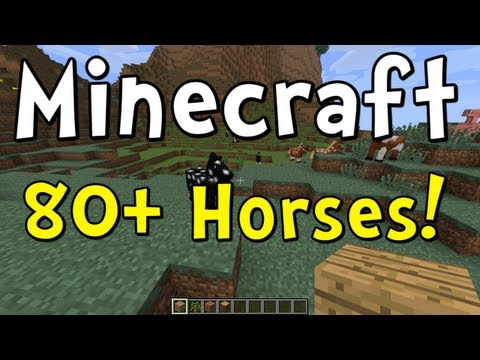 Minecraft Map Seed - 80+ Horses at Spawn! HORSES GALORE!