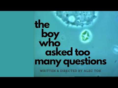 The Boy Who Asked Too Many Questions Video