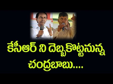 TDP & Congress alignment  2019 elections mahakutami  Pulihora News