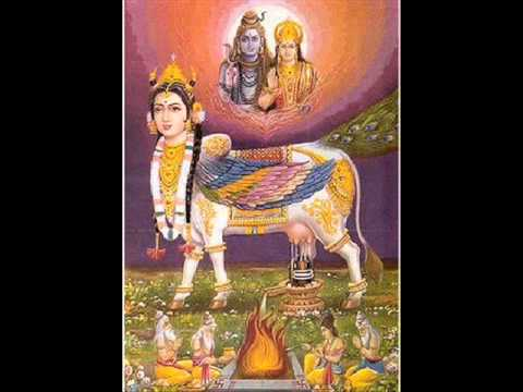 Gau Mata Ki Aarti by Bharathi Vishwanathan