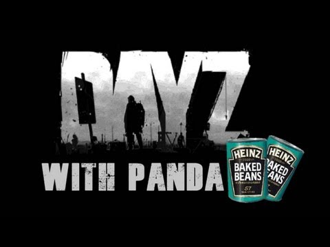 DayZ - HybridPanda gone WILD - Night time murder fest