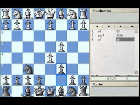 GM Alterman's Gambit Guide: Scandinavian Gambit #1 for Chessclub.com