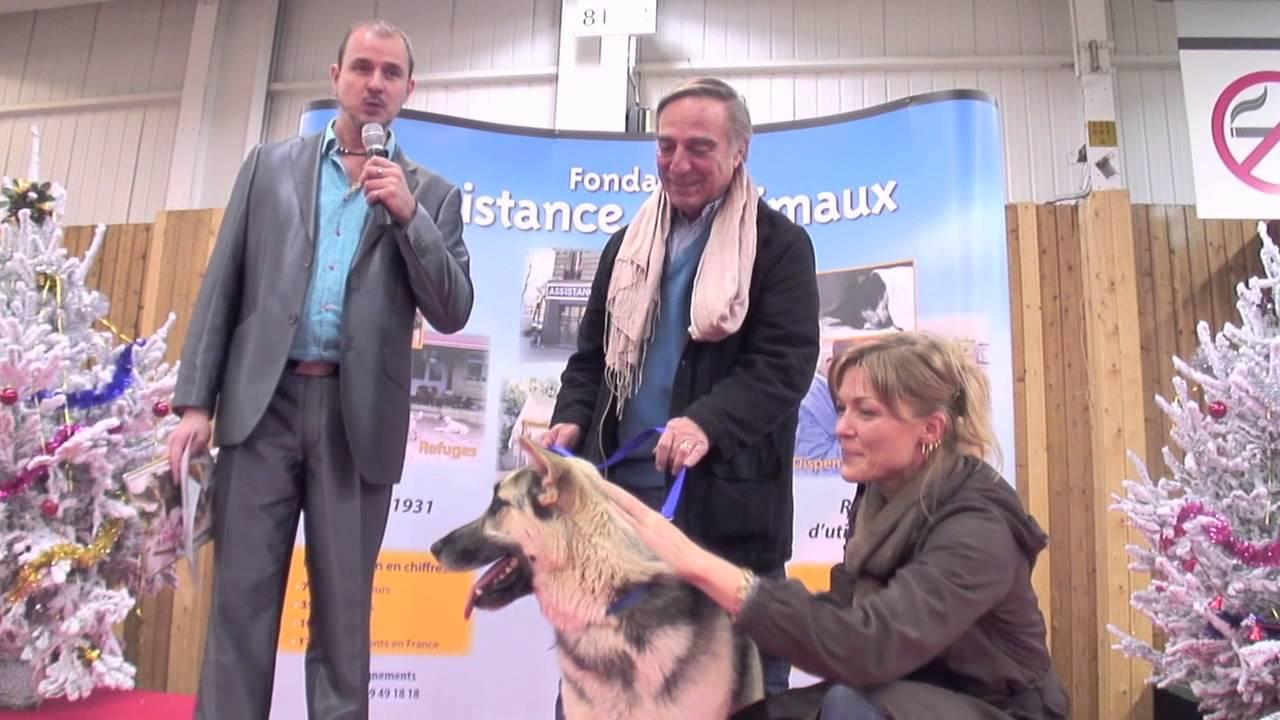 Noel des animaux 2012 paris porte de versailles 24 25 novembre 2012 youtube - Porte de versailles animaux ...