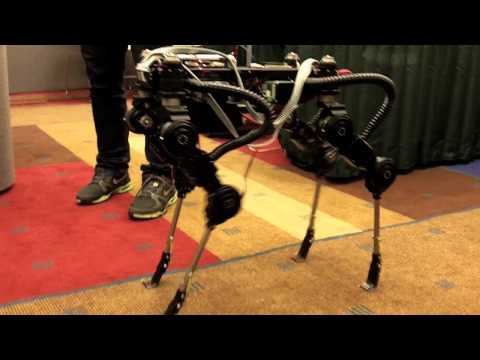 SimLab Quadruped Robot from South Korea