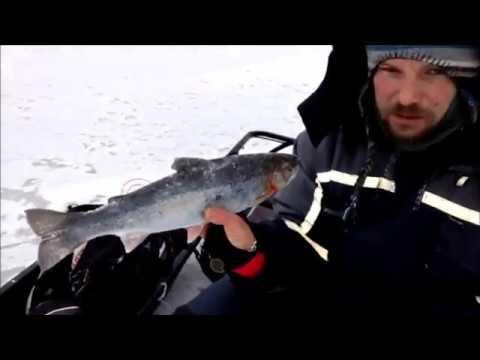 видео на рыбалке бесплатно на ладоге