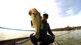 Alabama Rig + Big Bass = Spring Bass Fishing Fun!