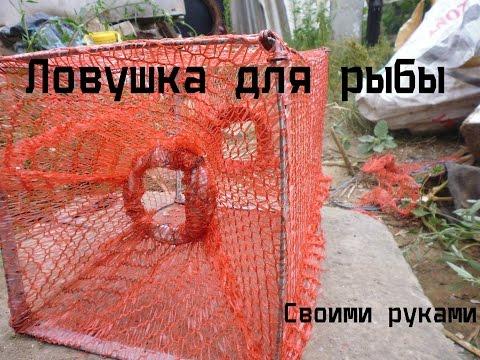 Как сделать ловушку для рыбы в домашних условиях
