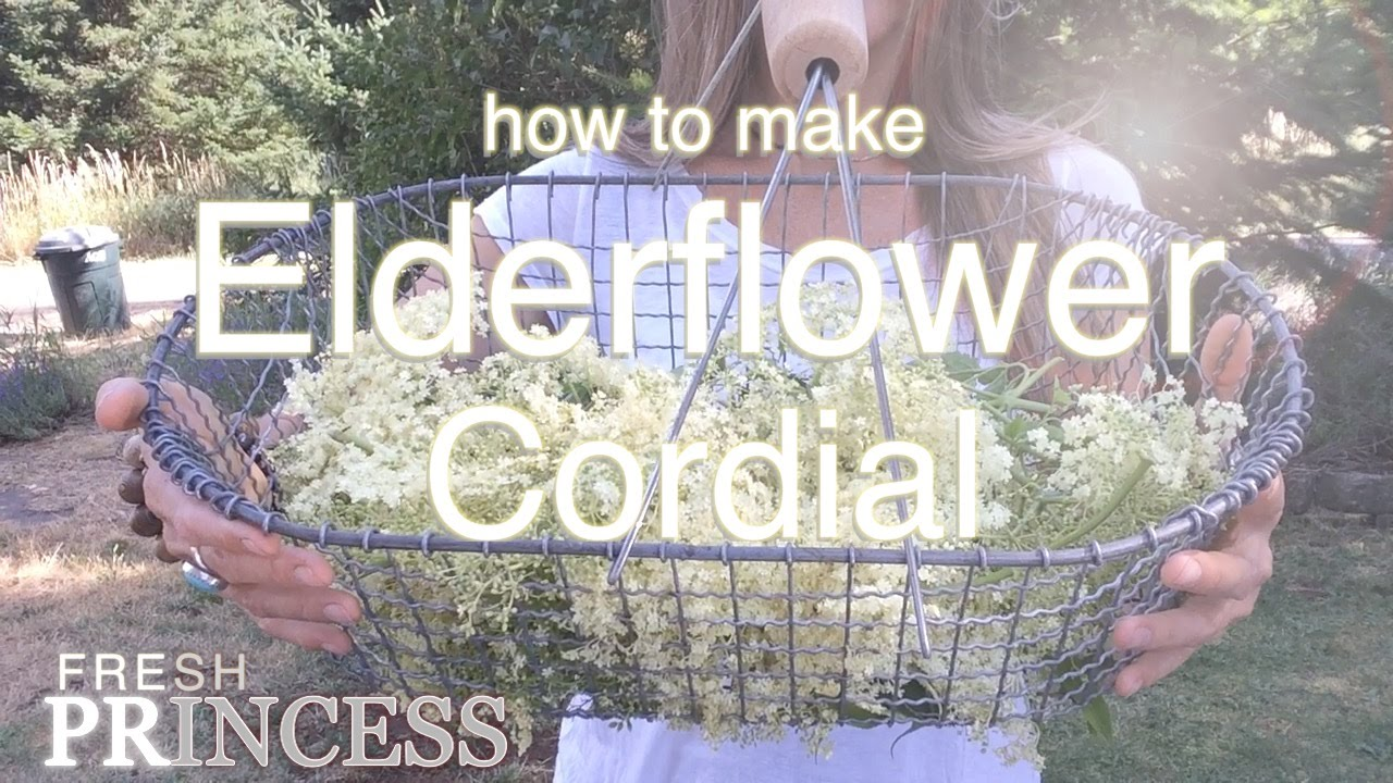 How to Make Elderflower Cordial recommend