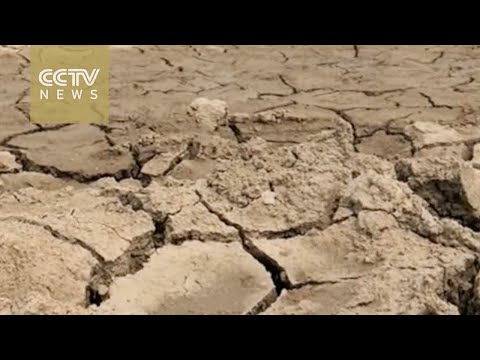 A third of India suffering from drought