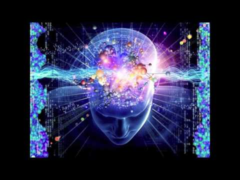Terence Mckenna - The stoned ape theory
