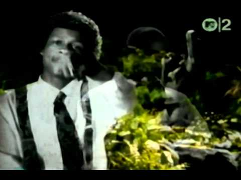 Penthouse Players Clique Feat. Eazy-e & Dj Quik - P.s. Phuk U 2 - 1992 video